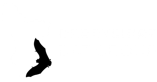 derbyshire bat group logo alt white
