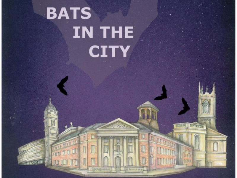 Bats in the City